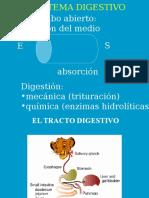 Digestion 2011