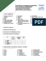 1.1.1 Historia Clinica Pediatrica