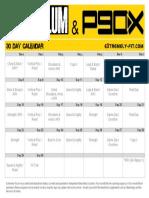 Asylum-P90x_Calendar.pdf