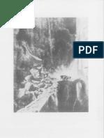 11.pdf