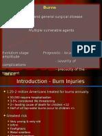 Arsuri burns ENG.ppt