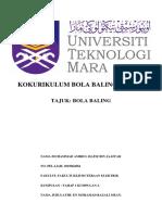 75211086-Sejarah-Bola-Baling-Di-Dunia.pdf