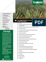 tecnoagave 45.pdf