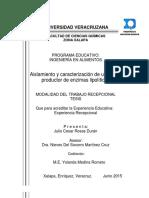 Ailamiento y caracterización de un hongo productor de enzimas lipolíticas