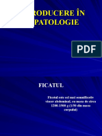 Introducere in hepatite.ppt