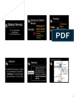 1201995272_estrutura_do_sistema_nervoso.pdf