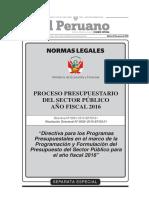 directiva0001_2015EF5001.pdf