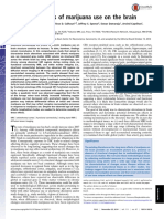 Long-term effects of marijuana use on the brain.pdf
