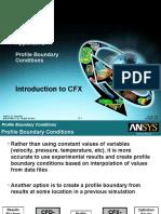 CFX13 D Profile BCs