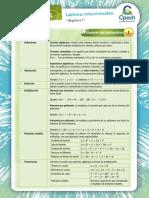 Lamina-8 algebra I_PRO.pdf