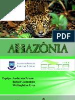 Amazoniapronto [SLIDES]