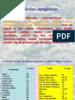 T 02 Agua y Sales Minerales (1)