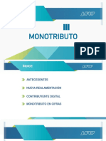 Monotributo reg3990
