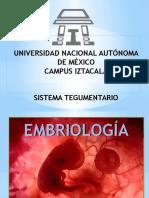 Embriología tegumentario.pptx