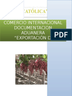 TRABAJO FINAL Exportacion de La Uva