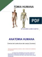 (1) Generalidades - Osteologia Del M. Superior (1 y 2)
