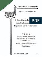 Palomino Dominguez
