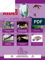 02 Poster Aedes