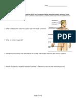 Endocrine System Notes 1314