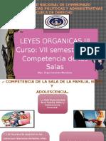 Competencia y fuero.pptx