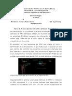 Tarea 3. Transcripción del ADN y sintesis de proteínas.docx