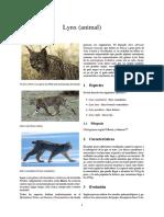 Lynx (Animal)