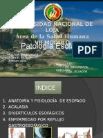 patologiaesofagica-140114134001-phpapp02.pptx