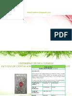 Fichas de fertilizantes