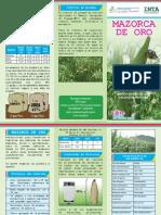 Brochure Mazorca de Oro