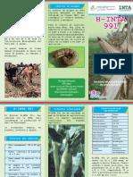 Brochure H-InTA 991