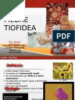 fiebretifoidea-120809144727-phpapp01.pptx