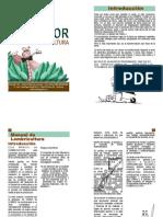 Manual de Lombricultura