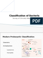 Classification of Bacteria Clinically Relevant Bacteria 092410