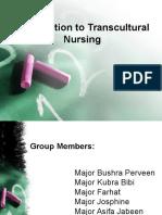 Transcultural(Presentation)