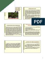 Charla_estabilidad_de_taludes.pdf