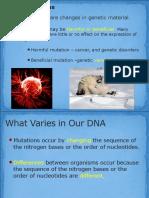 mutation notes ab