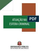 Atuação Na Esfera Criminal