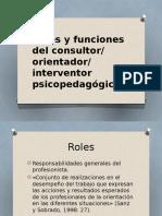 Roles Funciones Consultor