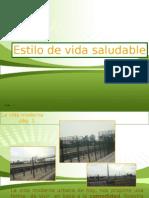 VIDA SALUDABLE 2007