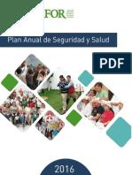Plan-Anual-de-Seguridad-y-Salud.pdf