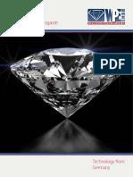 2013 Diamond Flyer ES Web