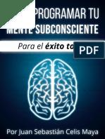 Como Programar Tu Mente Subconsciente
