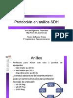 25-ProteccionAnillosSDH_1pp.pdf