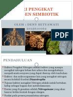 Bakteri Pengikat Nitrogen Simbion