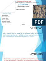LEVADURAS-MICROBIOLOGIA-termi-copia.pdf