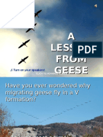 A LESSON FROM GEESE.ppt