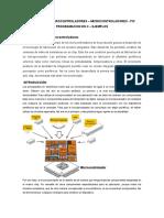 MUNDO DE MICROCONTROLADORES.docx