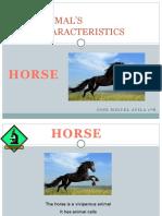 Animal's Characteristics