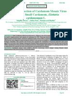 Serological Detection of Cardamom Mosaic Virus Infecting Small Cardamom, Elettaria                              cardamomum L.