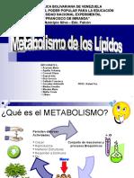 MORFO - Metabolismo de los Lípidos